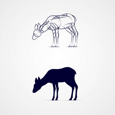 grazing: Young Deer Silhouette with Sketch Template on Gray Background.
