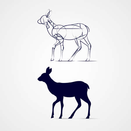 dignified: Young Deer Silhouette Standing with Sketch Template on Gray Illustration