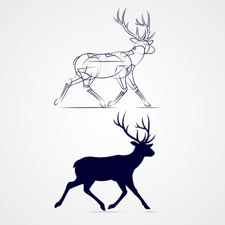 vertebrate: Running Horned Deer Silhouette with Sketch Template on Gray Background