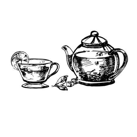 Hand Drawn Sketch of Teacup and Teapot. Vintage Sketch. Great for Banner, Label, Poster Illustration