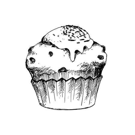 scratchy: Hand Drawn Sketch of Cup Cake. Vintage Sketch. Great for Banner, Label, Poster