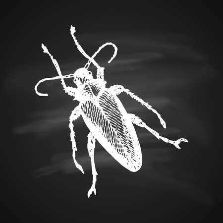 Longhorn Beetle Icon Painted a White Gel Pen on Black Background Illustration