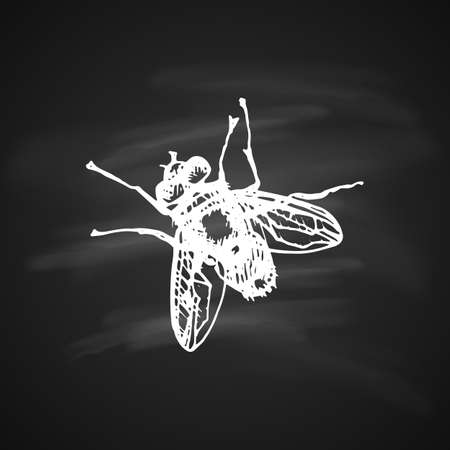 The white silhouette of the Fly on black background. Icon silhouette illustration. Ilustracje wektorowe