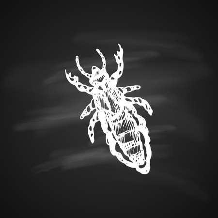 The white silhouette of the bug crum painted a gel pen on black background Illustration