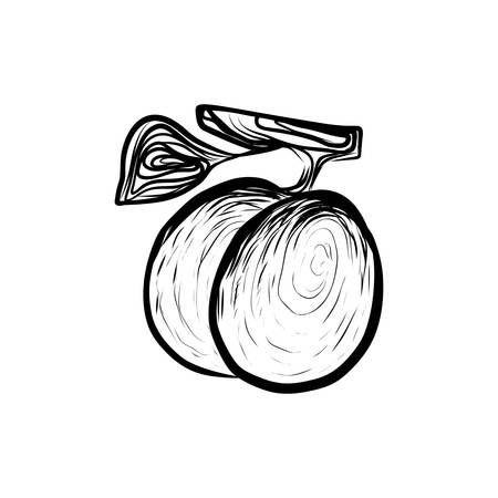 Sketch Illustration of Fresh Sappy Plums Fruitful. Hand Drawn Icon on White Background