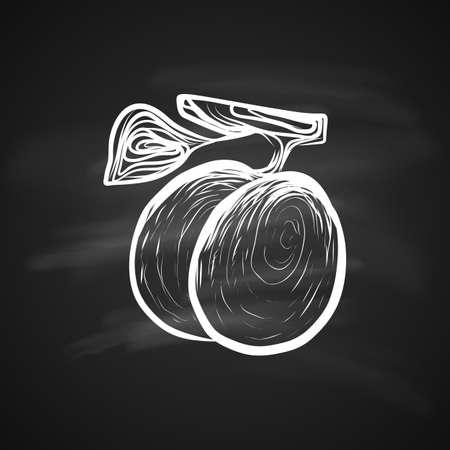 Sketch Illustration of Plums Fruitful. Hand Drawn Icon on Blackboard
