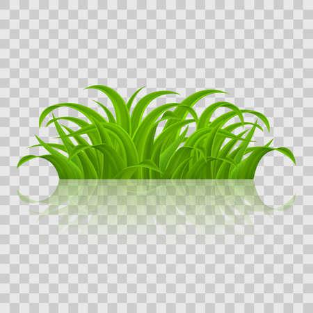 Fresh Green Grass design Stock Vector - 95758637