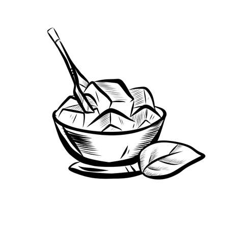 Sketch Illustration of Mint Leaf and Ice Bowl. Hand Drawn Icon on White Background