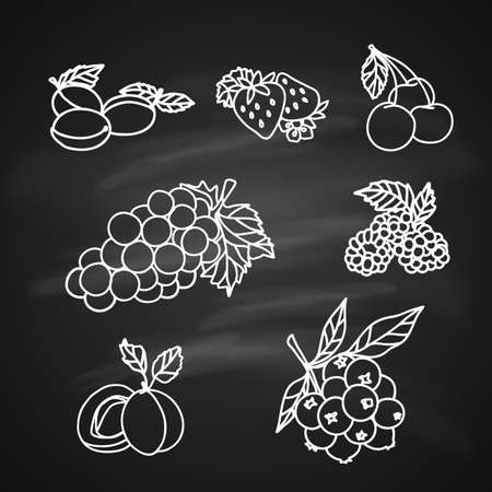 Fruit and Berry icons Sketch on Chalkboard Illustration