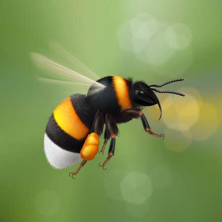 Illustration of Flying Bumblebee Ilustração