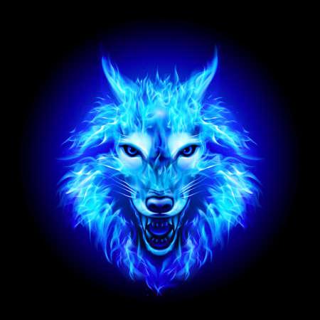 Capo del fuoco aggressivo Woolf. Immagine concettuale di un lupo blu e una fiamma su sfondo nero