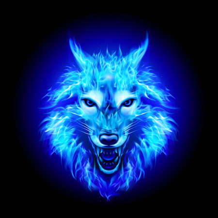 Head of Aggressive Fire Woolf. Concept Image of a BLue Wolf and Flame on a Black Background
