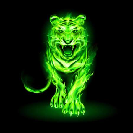 Illustration of Big Green Fire Tiger Walking and Roaring on Black Background