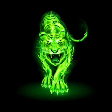 Illustration of Green Big Fire Tiger Walking and Roaring on Black