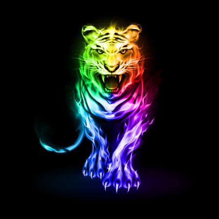 Illustration of Big Rainbow Fire Tiger Walking and Roaring on Black Background Vettoriali