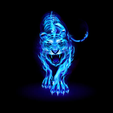 Illustration of Big Blue Fire Tiger Walking and Roaring on Black Ilustração