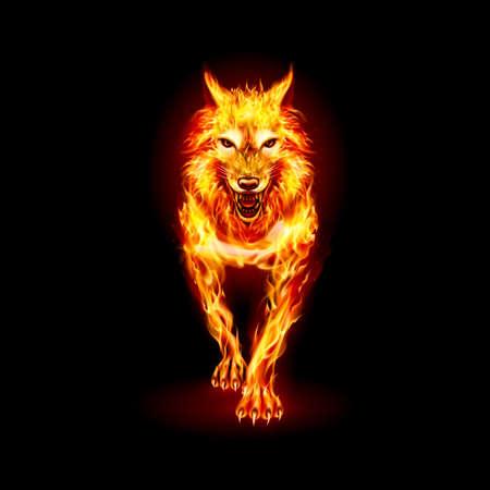 Woolf de fuego agresivo. Imagen conceptual de un lobo rojo y una llama sobre un negro Ilustración de vector