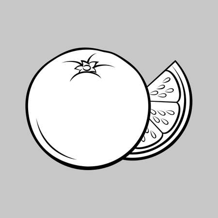 Illustration of Stylized Whole and Slice Orange. Monochrome Icon for Food Apps and Stickers Isolated on a Gray