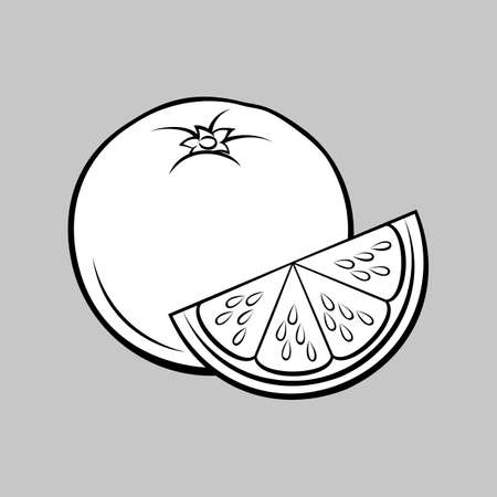 Illustration of Stylized Whole and Slice Orange. Monochrome Icon for Food Apps and Stickers Isolated on a Gray Background