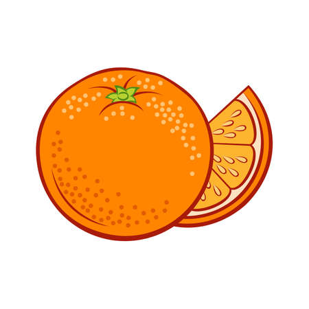 Illustration of Colorful Juicy Stylized Whole and Slice Orange. Icon for Food Apps and Stickers Isolated on a White Background