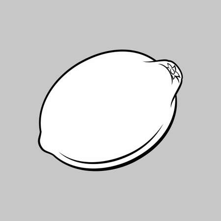 Black and White Illustration of Delicious Lemon Fruit. Icon for Food Apps and Web