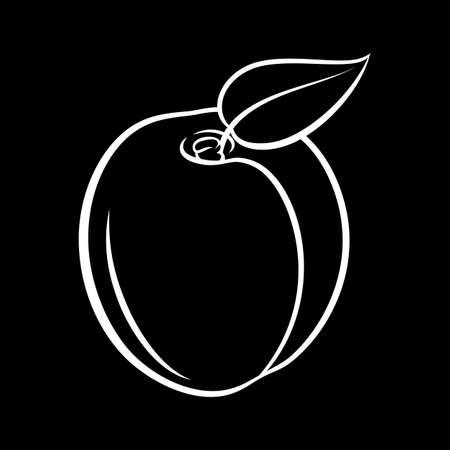 Illustration of Juicy Stylized Apricot Fruit with Leaf. Decorative Retro Style Farm Product Restaurant Menu on Blackboard