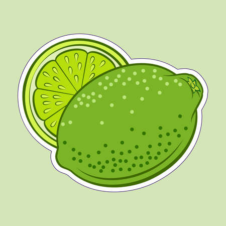 Illustration of Colorful Juicy Stylized Whole and Half Lime. Icon for Food Apps and Stickers Isolated on a Green Background