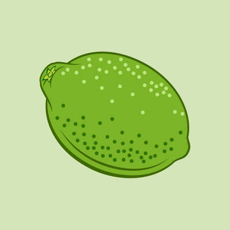 Illustration of Juicy Stylized Lime Citrus Fruit. Icon for Food Apps Isolated on a Green Background