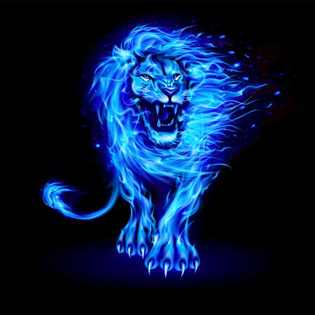 Abstract Illustration of Infuriated Lion with Fire Flames Fur in Blue Color on Black Background for Design