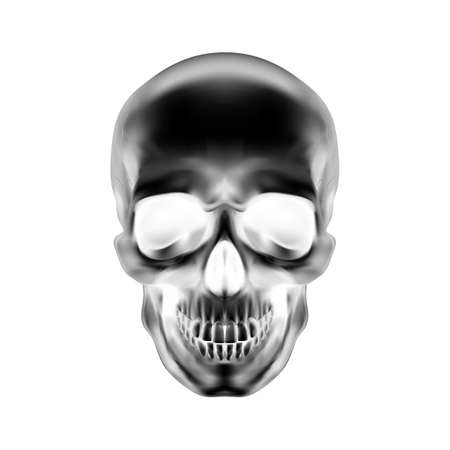 Human Skull on White Background. The Concept of Death, Horror. A Symbol of Spooky Halloween Illustration