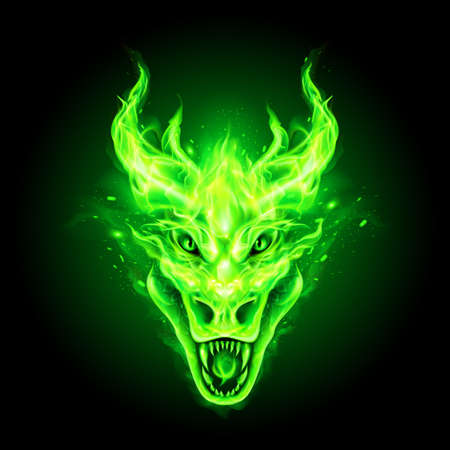 Fire Dragon Head in Green Flame on the Dark Background. Modern Illustration Concept Style for Badge, Emblem and T-Shirt Printing