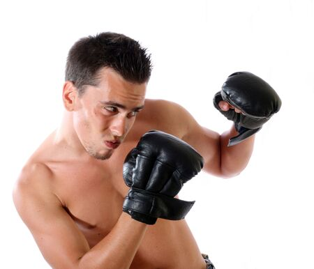 The young boxer on a white background . photo