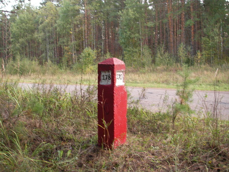 is established: The boundary quarter post is established on one of corners of the wood lot