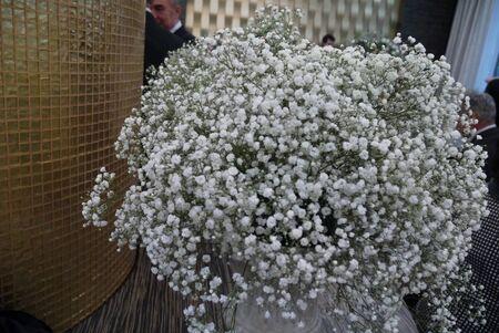 przypominać: Small snow-white flowers in a bouquet remind a snowdrift