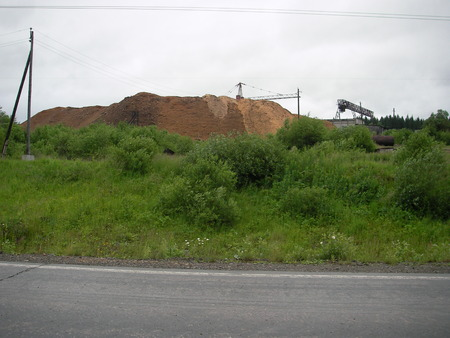 collected: The huge mountain of sawdust collected for many years of work of woodworking combine