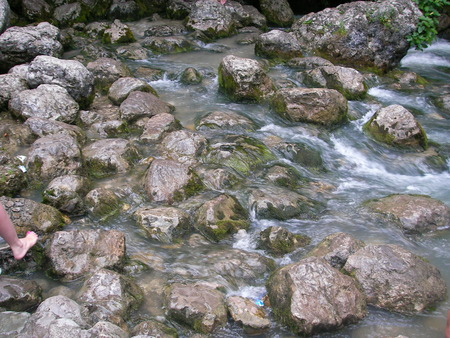 foamed: The mountain river squeezed from both parties by unapproachable walls of the wood foamed, raising shaft, and promptly slid by. Stock Photo
