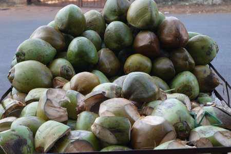 copra: Someone calls a coco fruit, someone a nut, but actually it that, another. The coco is a stone fruit