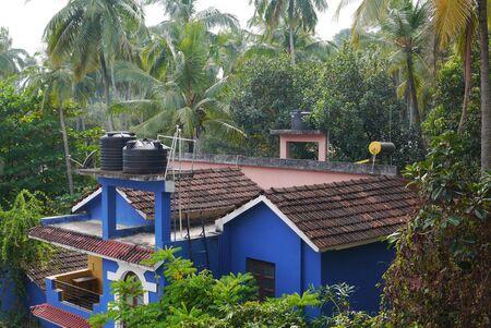 lodges: guest lodges among palm trees
