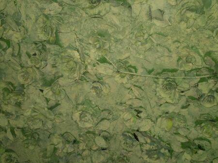 escapes: background of various otten green with a vegetable ornament