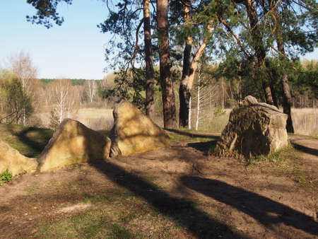 glades: Stones in the wood on a glade