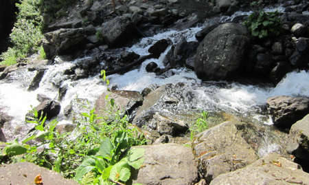 waters: The mountain river promptly bears the waters on the gorge among mountains