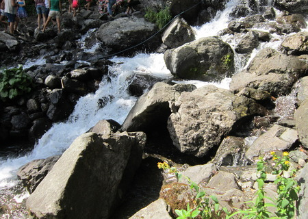 promptly: The mountain river promptly bears the waters on the gorge among mountains
