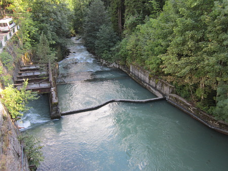 concrete form: The mountain river in the form of a water utility is put into concrete coast