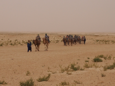 the caravan leaves deep into the sandy desert