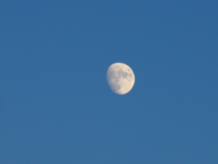 neighbor: The moon in the evening sky - the novel and attracting our neighbor