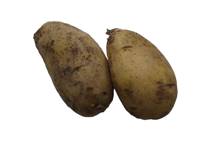 Large tubers of potatoes on a white background