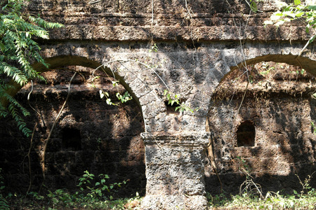 Gate of the old thrown fortress in the State of Maharashtra in India, overgrown with tree Stok Fotoğraf