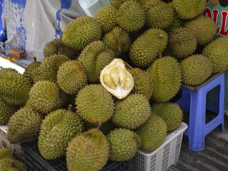 Fruits of durian are covered with powerful prickles