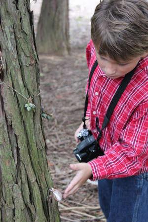 Boy Inspecting a Tree Imagens