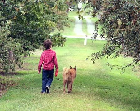 A child walking dog